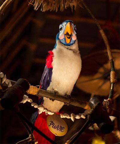 Pierre the singing Audio-Automatronic bird | HarshLight/Creative Commons