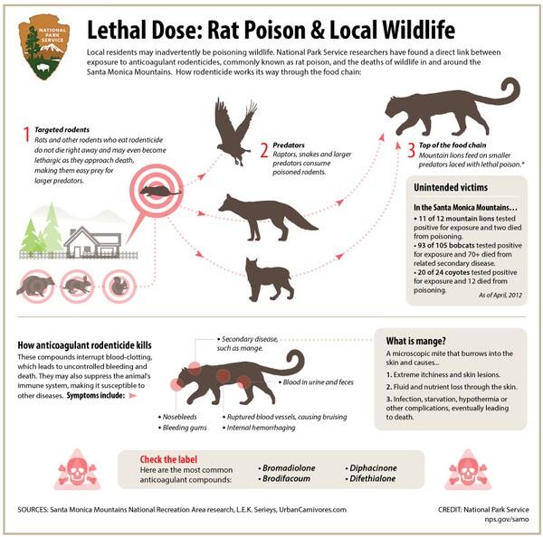 rsat-poison-infographic-4-18-14.jpg