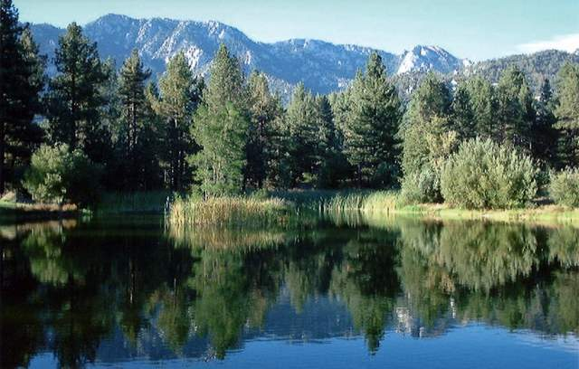 Fleming Ranch in the San Bernardino National Forest | Photo: Maria Grants/Courtesy Trust for Public Lands