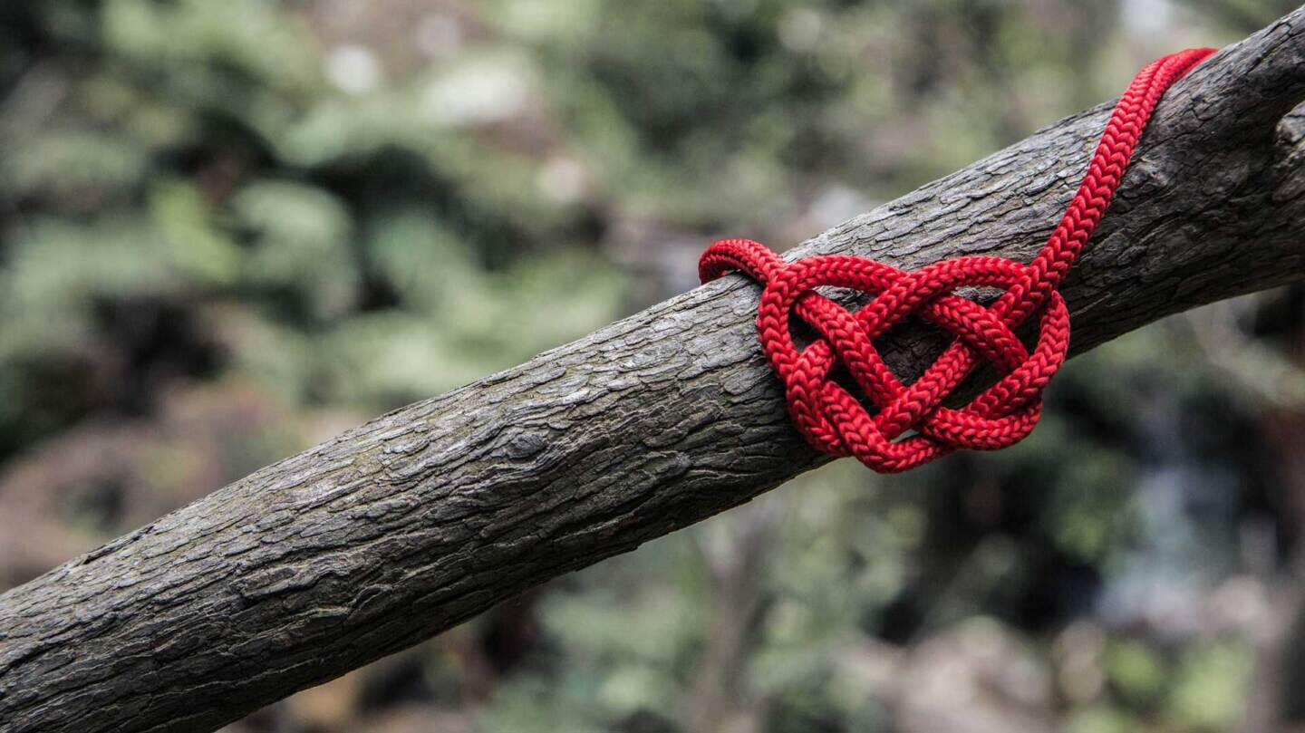 A heart-shaped knotted string on a branch | Will O / Unsplash