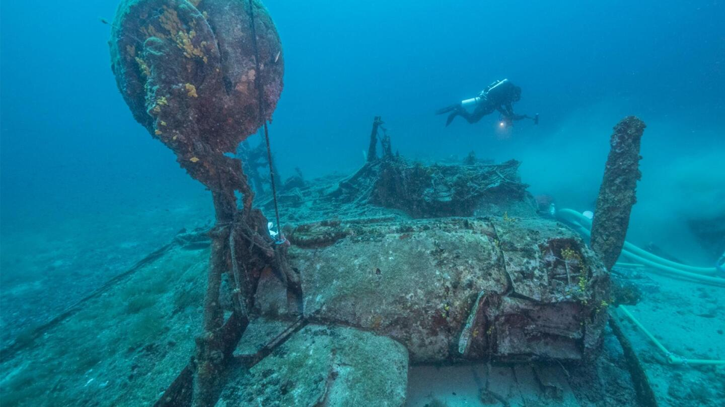 "Undersea wreckage is being examined by a scuba diver. | ""NOVA: Last B-24"""