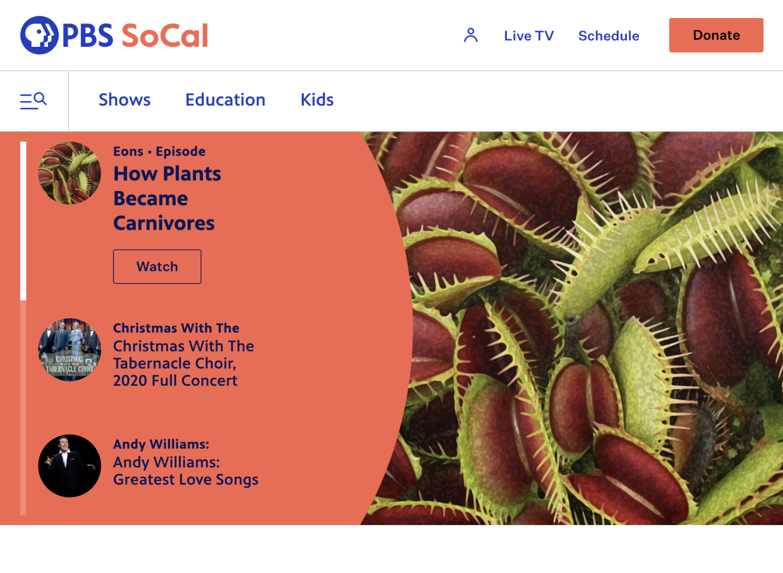 Image of PBS SoCal Homepage