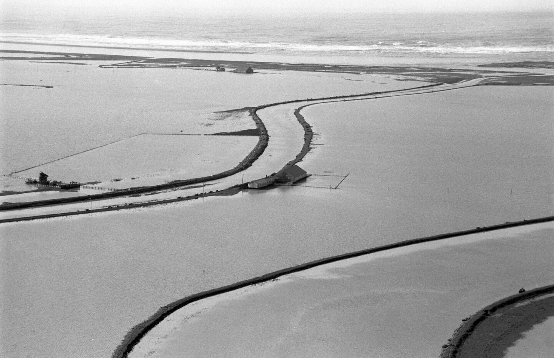 sacto-flood-surf.jpg