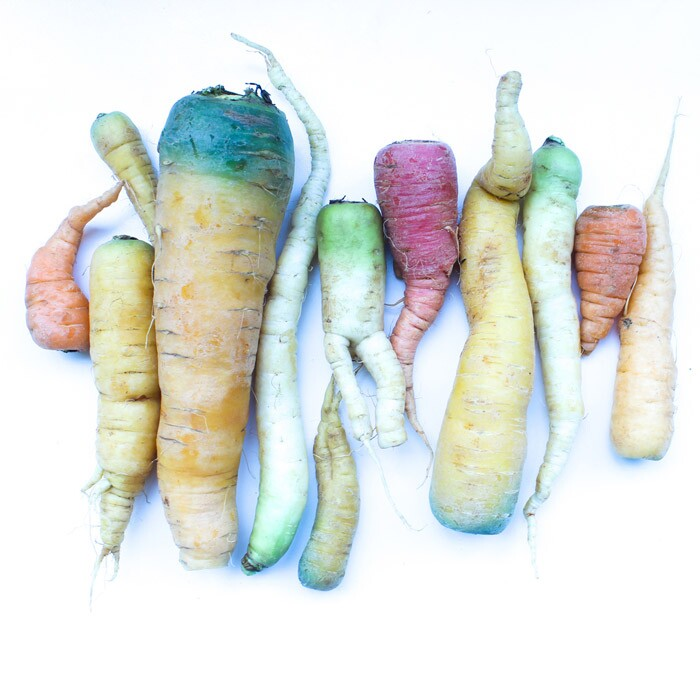 Multi-colored Carrot Lineup from Imperfect Produce