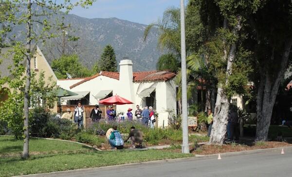 Pasadena Rain Garden