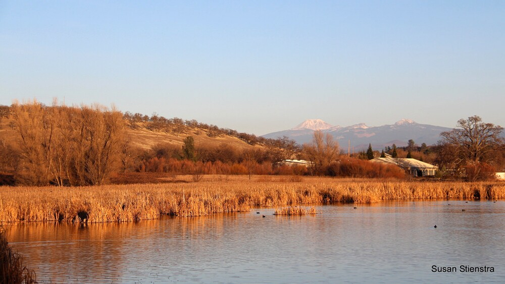 The Battle Creek Wildlife Area with Mt. Lassen in the background | Photo: Susan Stienstra, some rights reserved