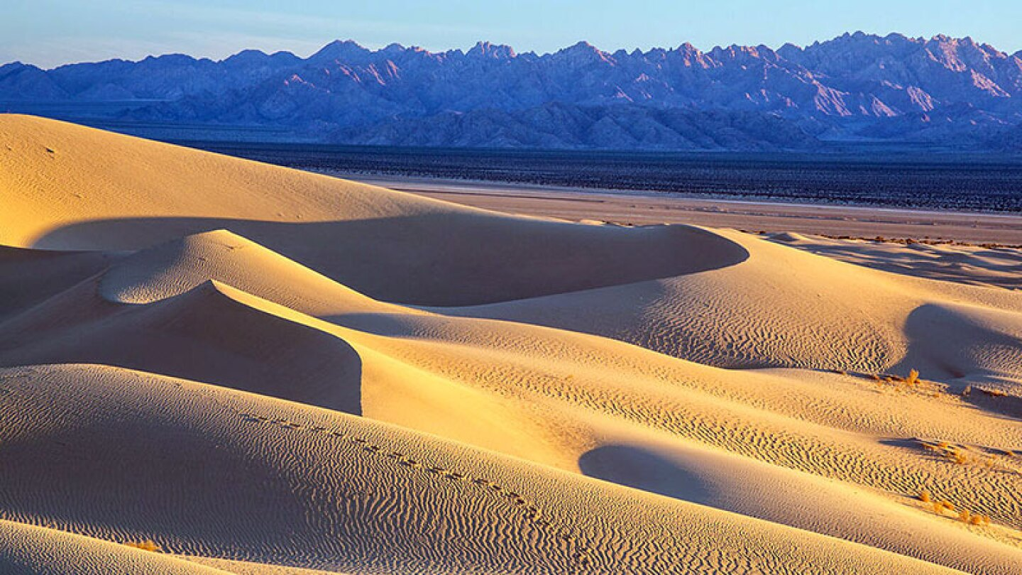 The Cadiz Dunes with the Old Woman Mountains in the background