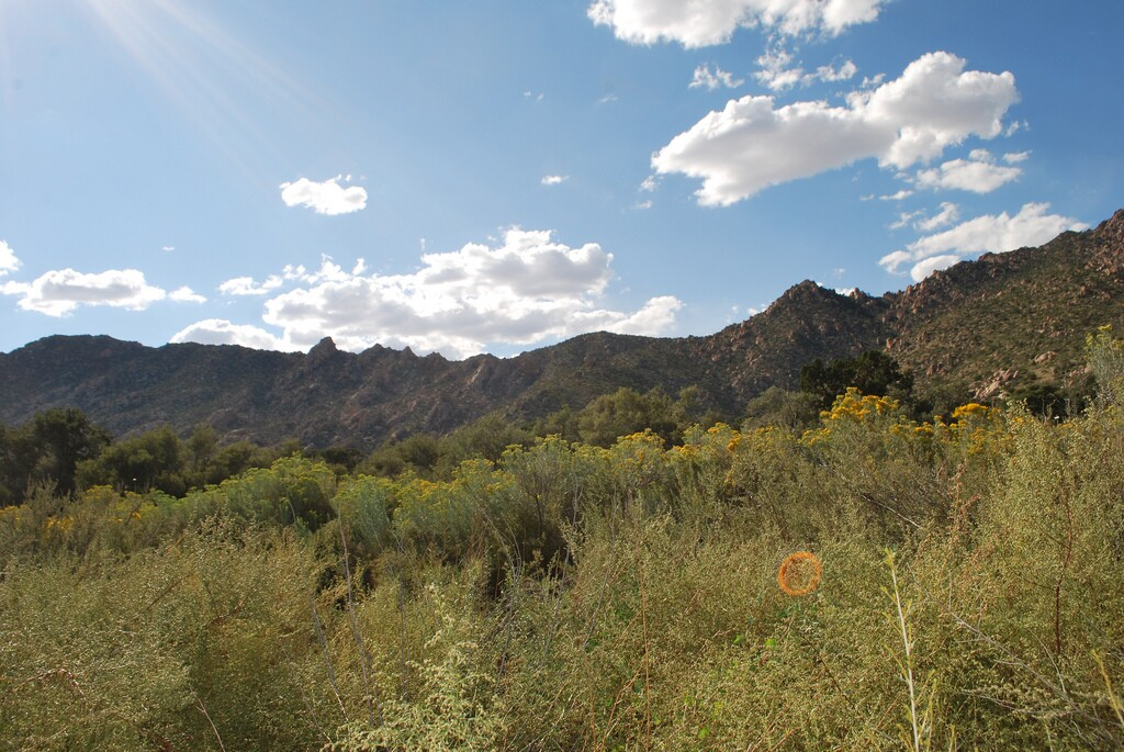 caruthers-canyon-3-4-16.jpg