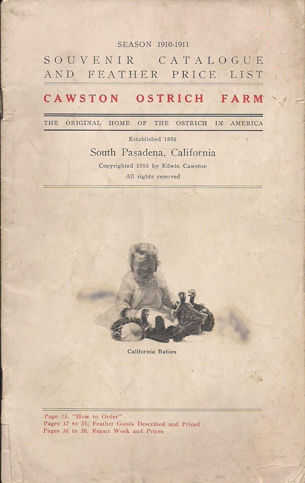 Souvenir Catalog and Feather Price List from the Cawston Ostrich Farm. Courtesy of the David Klappholz Collection.