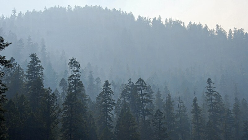 Smoke shades the Klamath River, cooling the water and helping salmon. | Photo: USFS