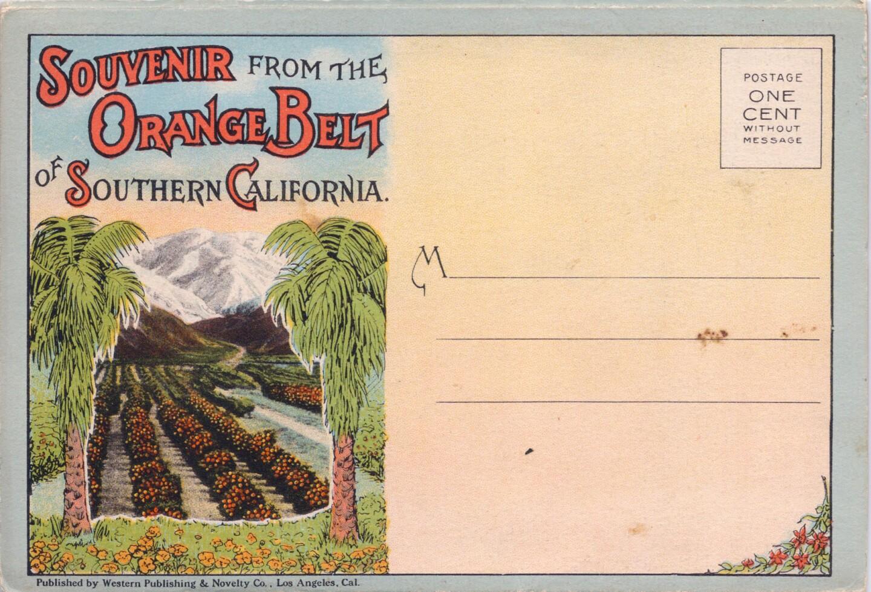 Souvenir from the Orange Belt of California