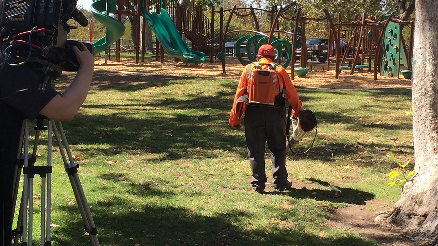 A man operates a leafblower in the park