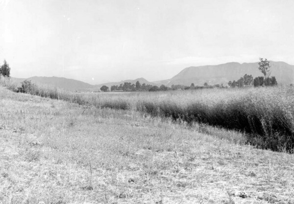 A view of the Santa Monica Mountains, taken near the present-day Paramount lot on Melrose in 1915. The Cahuenga Pass slices through the mountains toward the left of the photo. Courtesy of the USC Libraries - California Historical Society Collection.