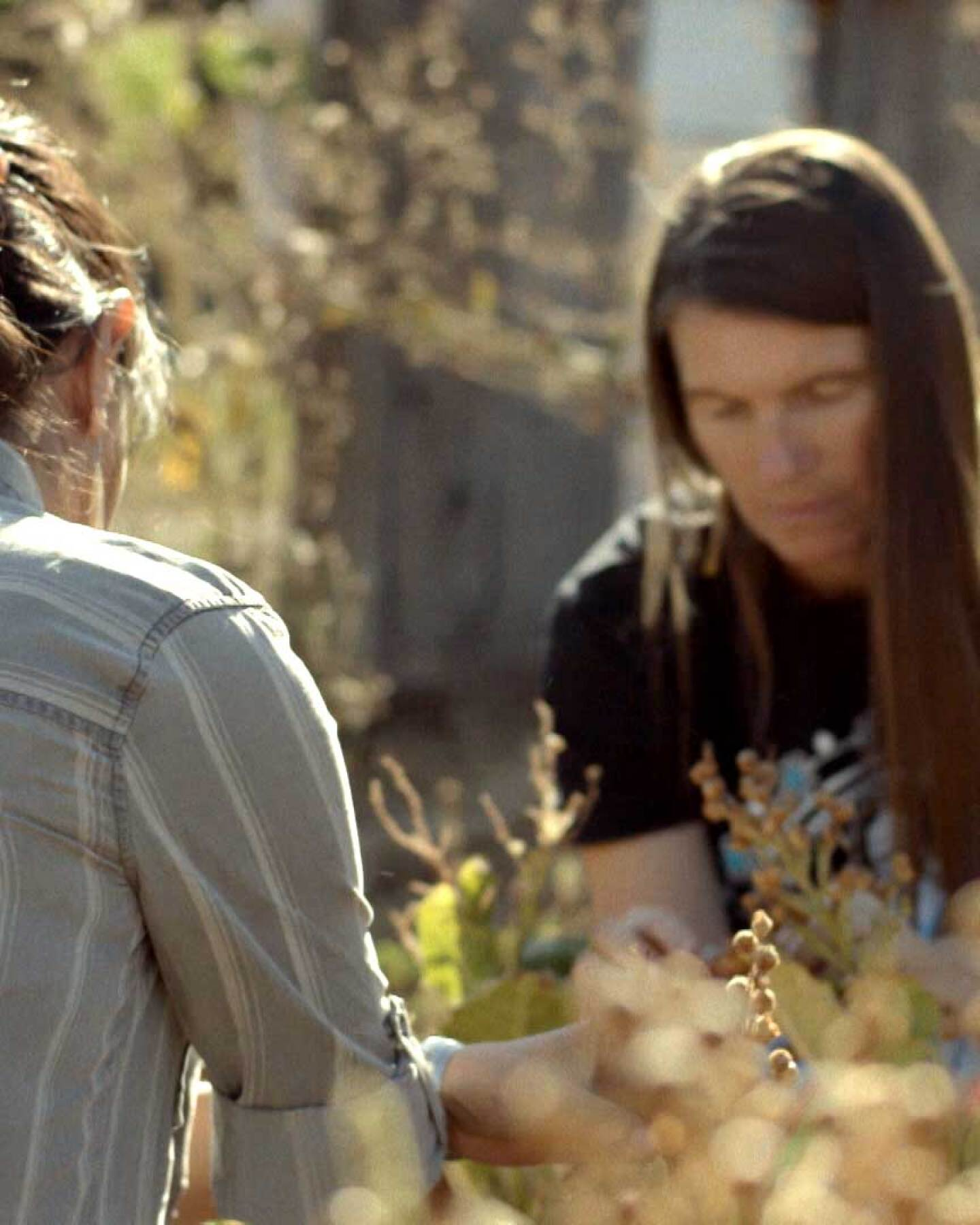 "Sara Moncada (Yaqui/Irish), chief program officer at the Cultural Conservancy, left, and Melissa K. Nelson (Turtle Mountain Chippewa), president and CEO of the Cultural Conservancy, right, tending plants together. | Still from ""Tending Nature"""