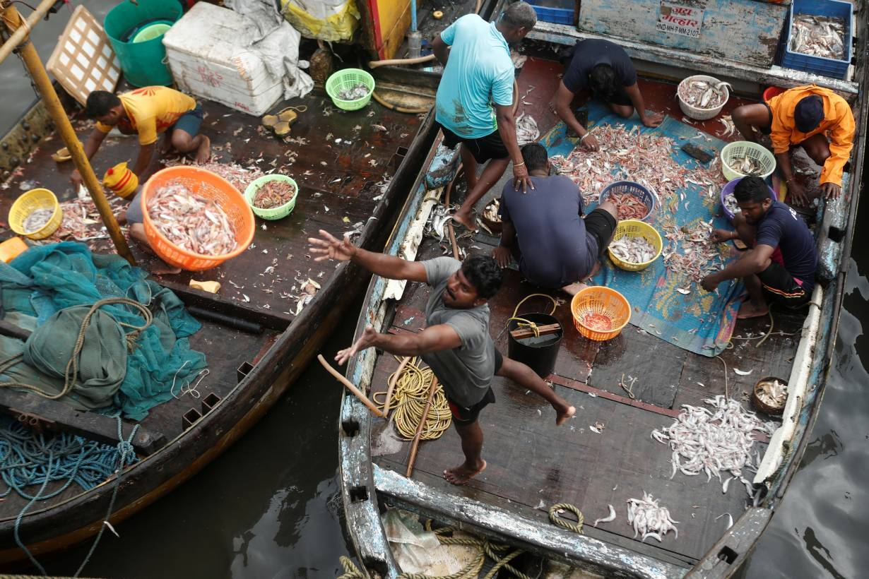 A fisherman throws a basket filled with fish to customers at a fish market amidst the spread of the coronavirus disease (COVID-19) in Mumbai, India, September 7, 2020.   REUTERS/Francis Mascarenhas