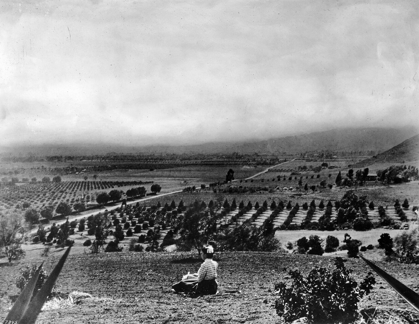 View of Hollywood in 1905, looking west by southwest from Laughlin Park. Courtesy of the Title Insurance and Trust, and C.C. Pierce Photography Collection, USC Libraries.