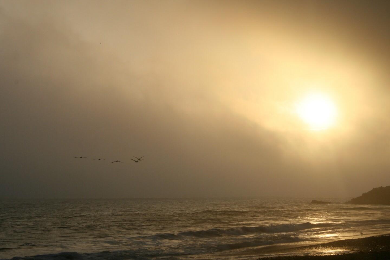 hazy_sun_beach_mountains_birds_stefmcdonald.jpg
