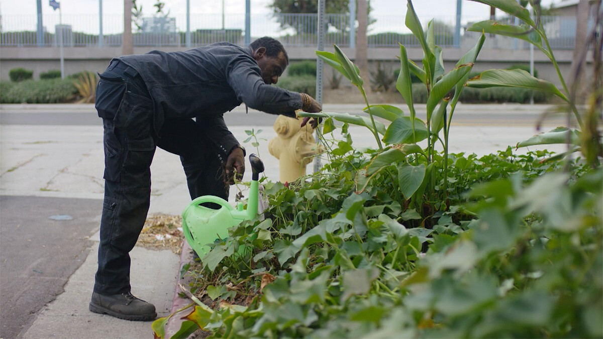 "Ron Finley tending his garden at the parkway. | Still from ""Broken Bread"" Access"