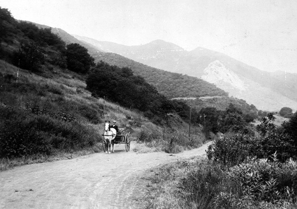 A horse-drawn carriage ascends a mountain road in Griffith Park, circa 1908. Courtesy of the Title Insurance and Trust / C.C. Pierce Photography Collection, USC Libraries.