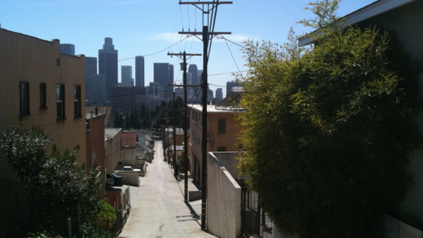 View of Downtown L.A. From Annie's hill