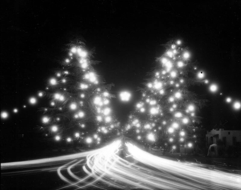 Christmas Tree Lane in 1929. Courtesy of the Security Pacific National Bank Collection - Los Angeles Public Library.