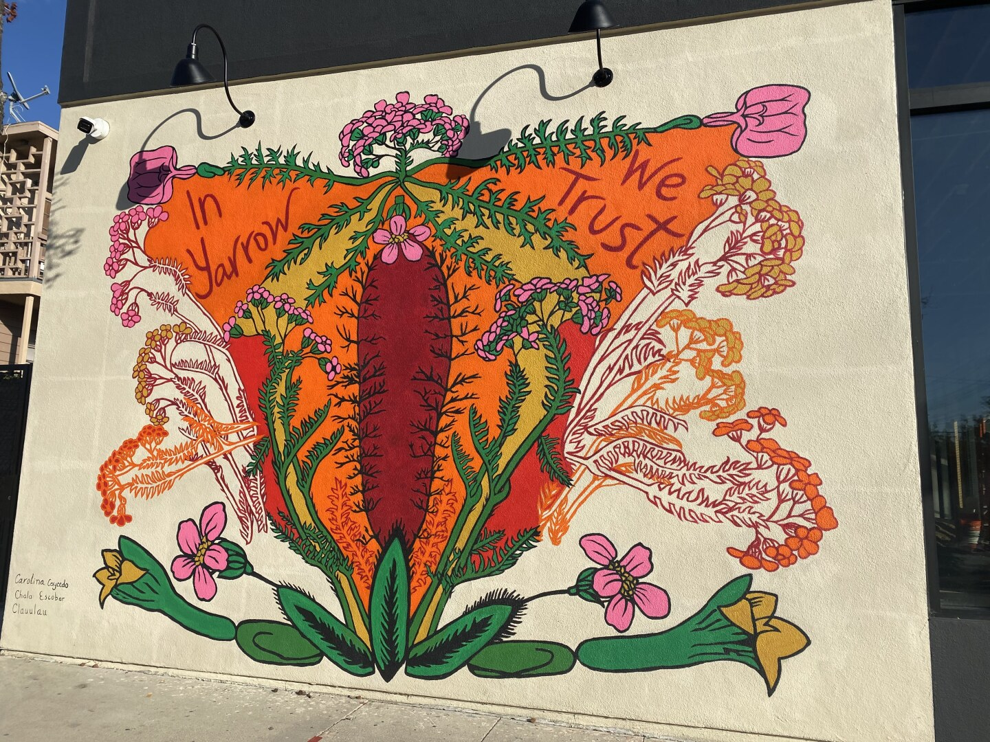 A brightly colored mural portrays a healing plant that closely resembles a uterus. The plant is said to help with menstrual pain.
