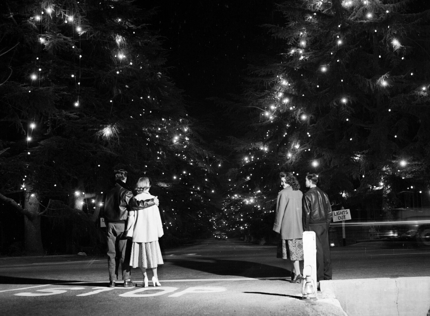 Christmas Tree Lane in 1953. Courtesy of the USC Libraries - Los Angeles Examiner Collection.