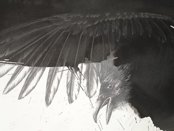 """""""Raven for PN"""" (detail), by Joanne Julian, 2010, graphite and ink on Arches paper, 42x30"""" 