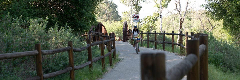 rosey on ojai bike path
