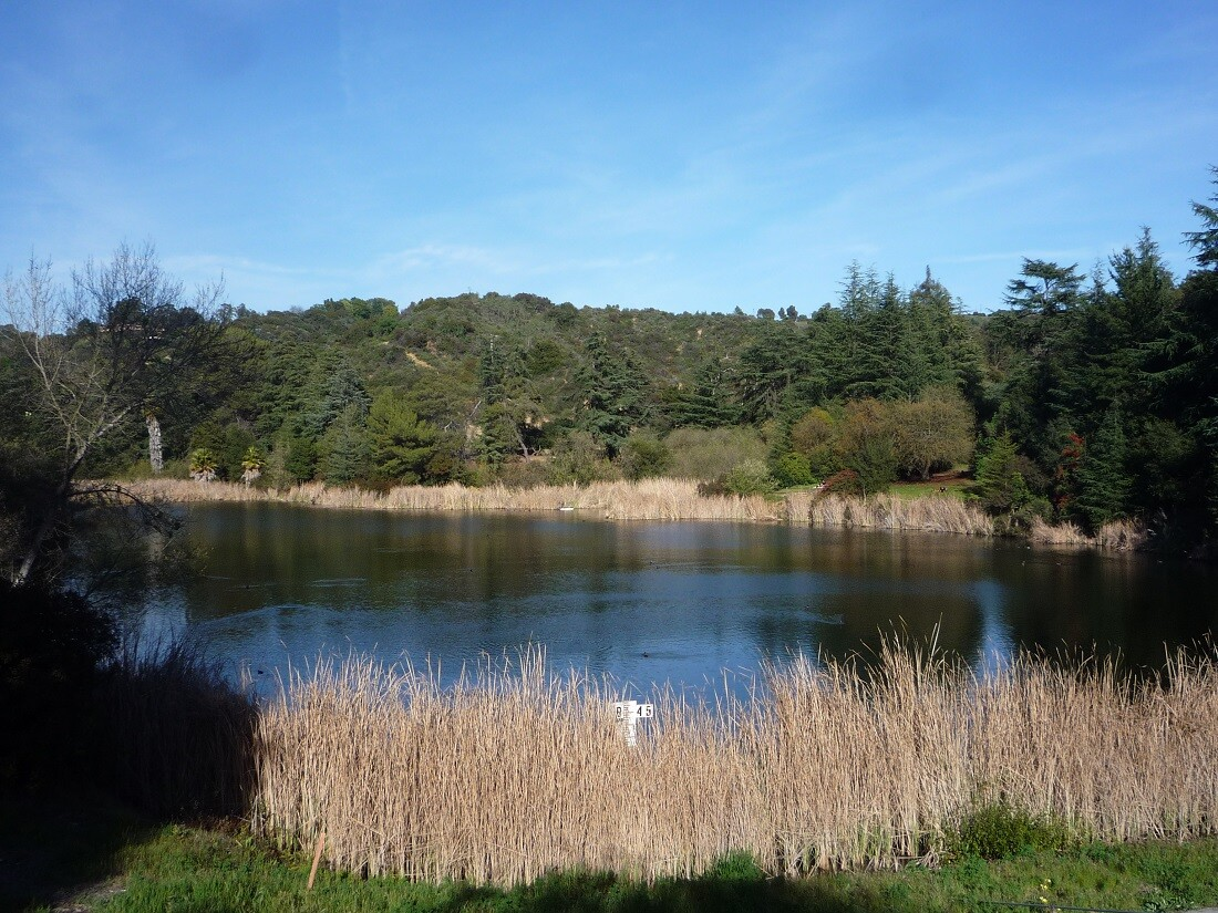 Franklin Canyon Park (3)