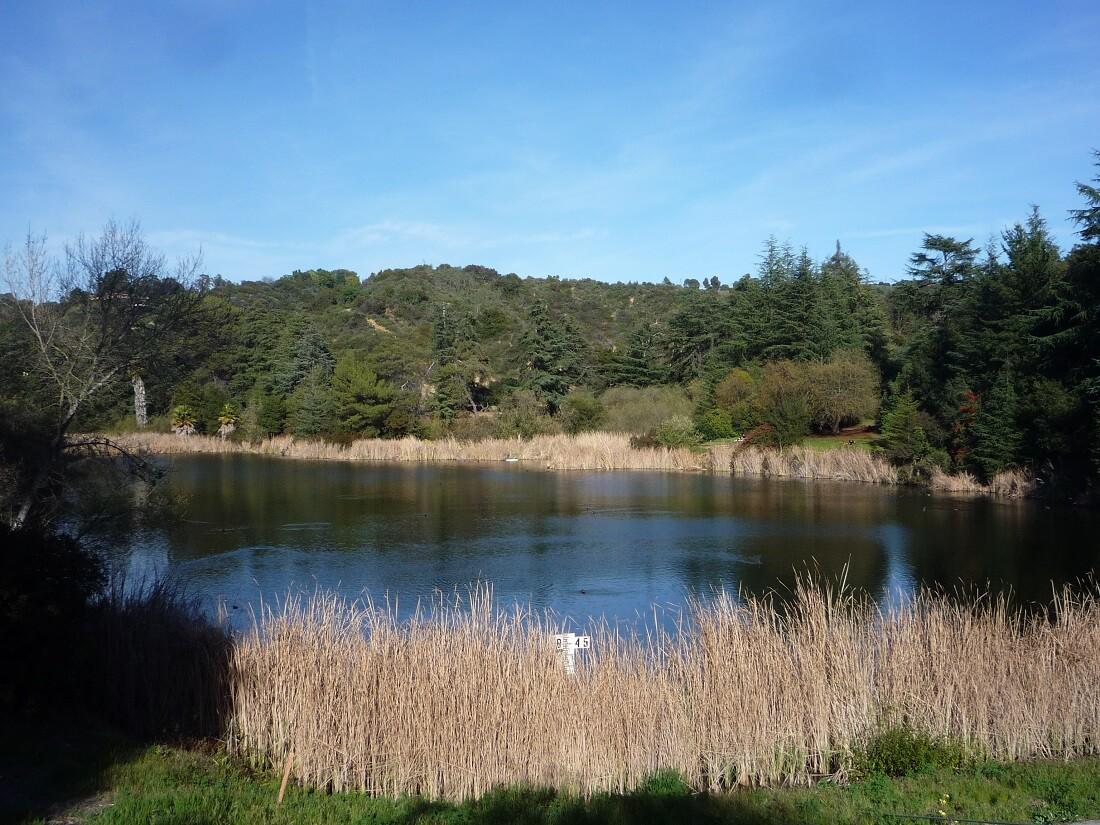 Franklin Canyon Park (3)