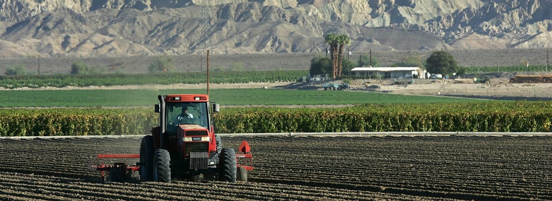 Farm in Coachella Valley near Mecca