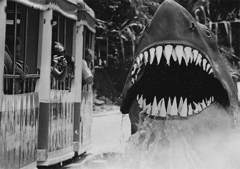 "Bruce the Great White makes an appearance for tour guests for the ""Jaws"" stop 