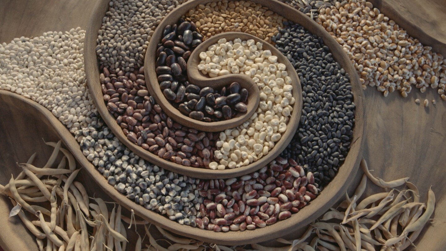 "Seeds from the Cultural Conservancy's seed library.  | Still from ""Tending Nature"" episode ""Cultivating Native Foodways with the Cultural Conservancy"""