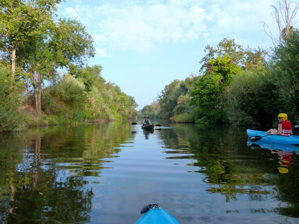 The pilot program leads kayakers through the a section of river in Sepulveda Basin