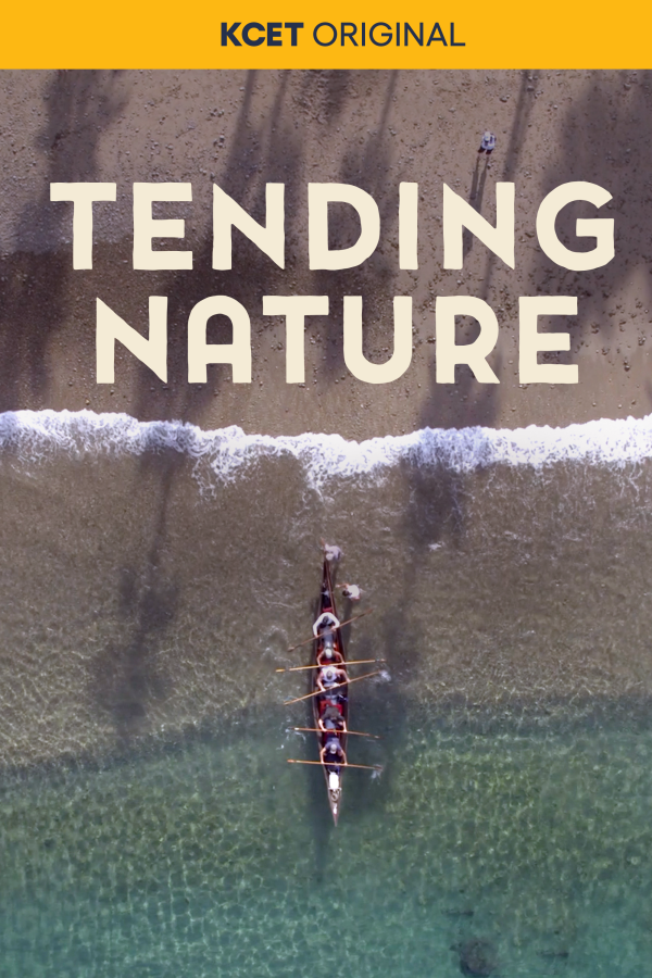 Tending Nature poster 2021