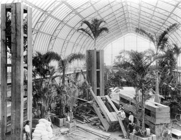 A interior view of one of the conservatories. Courtesy of the Photo Collection, Los Angeles Public Library.