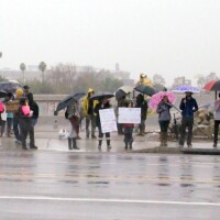 Demonstrators hold signs along Chapman Ave. next to the Santa Ana River | photo by Nick Gerda/Voice of OC