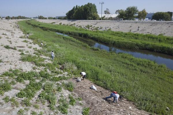 Compton Creek at Del Amo Blvd. Photo by Brian Minami.