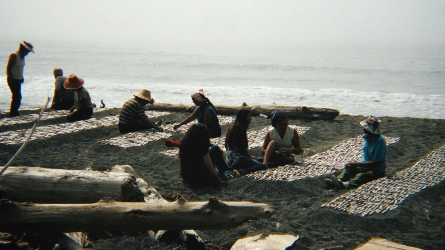 "Archival image of Tolowa people camping on the beach to catch and dry smelt. | Still from ""Tending Nature"""
