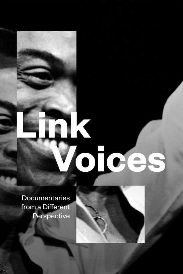 Link Voices Show Poster