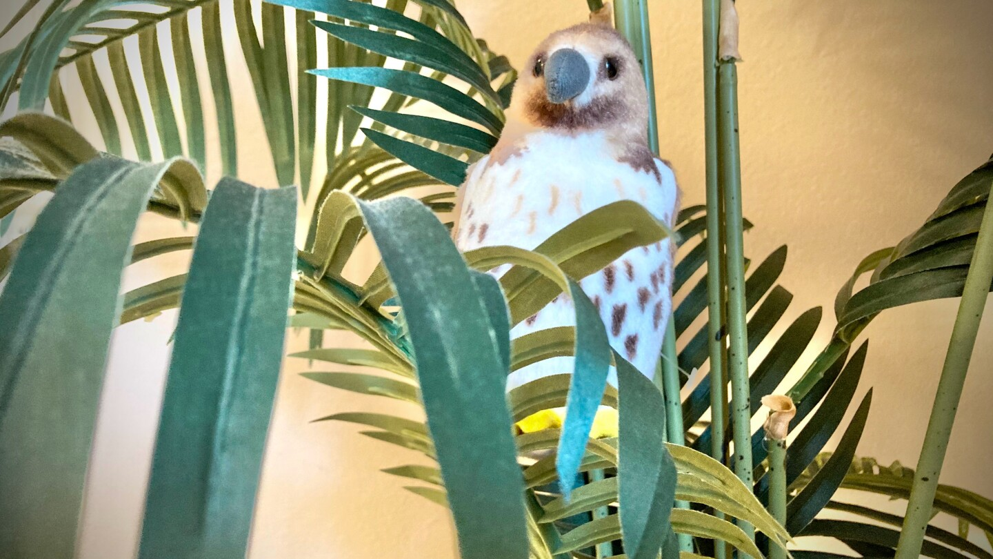"""A stuffed toy hawk relaxes in its house plant """"nest."""""""