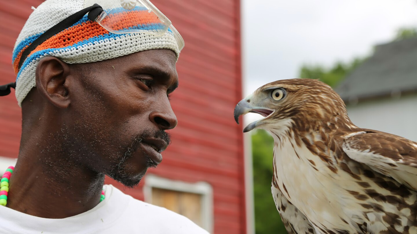 Rodney Stotts holds a Red-tailed hawk.