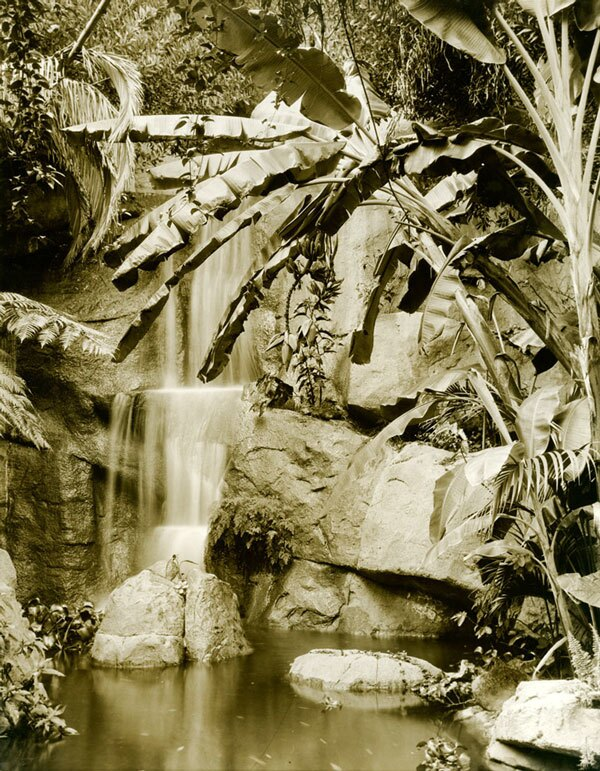Waterfall in the California Botanic Garden. Courtesy of the Los Angeles Area Chamber of Commerce Collection, USC Libraries.