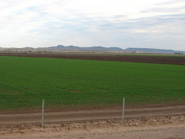 imperial-Agricultural-land-8-2-12-thumb-600x450-33618