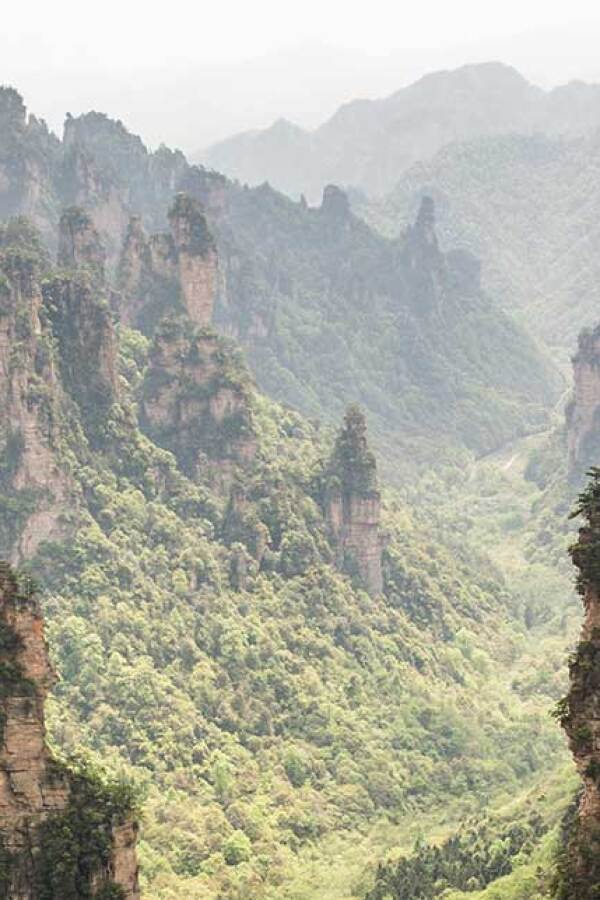 The Zhangjiajie Mountains in China.