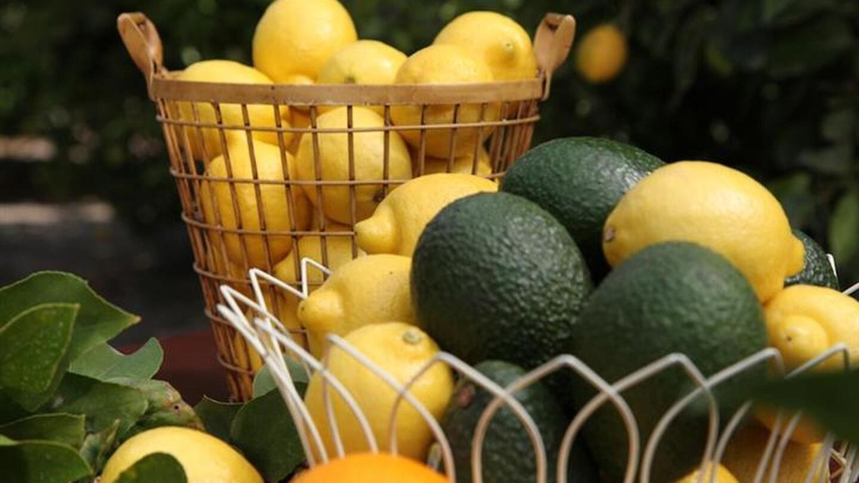 Baskets of lemons and avocados.