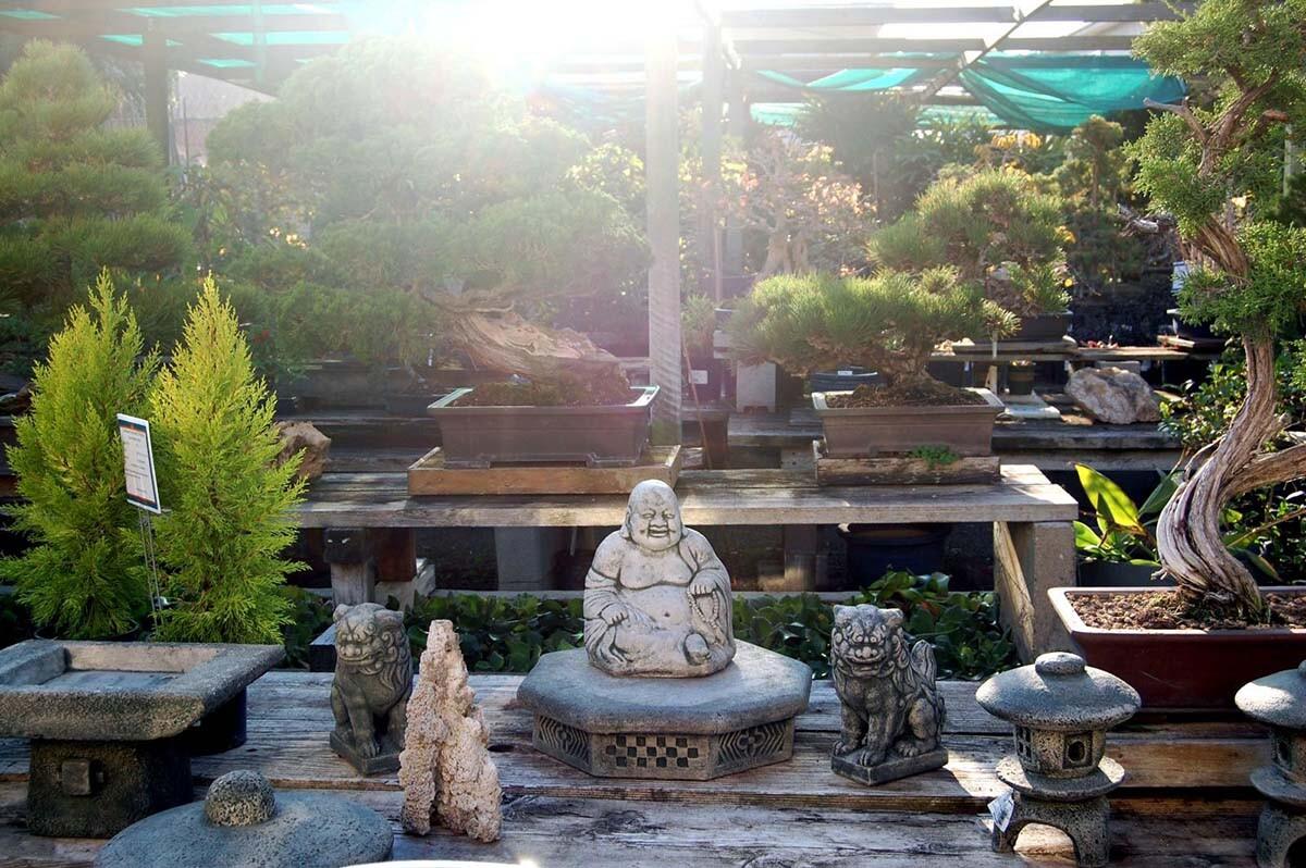 Yamaguchi Bonsai Nursery | Carmen/Flickr/Creative Commons (CC BY-NC-ND 2.0)