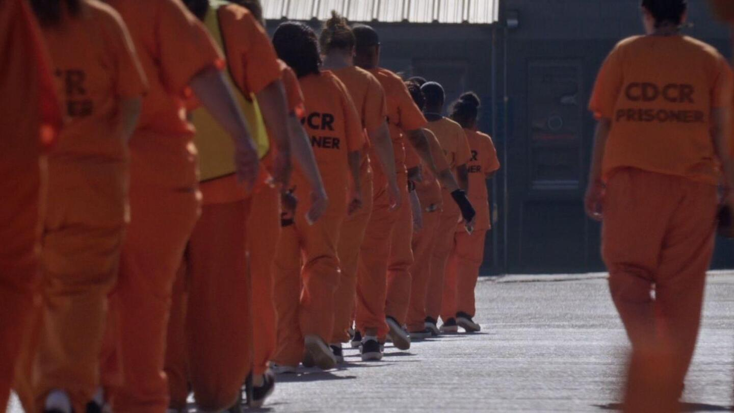 """Prisoners in orange jumpsuits walk in a line. 