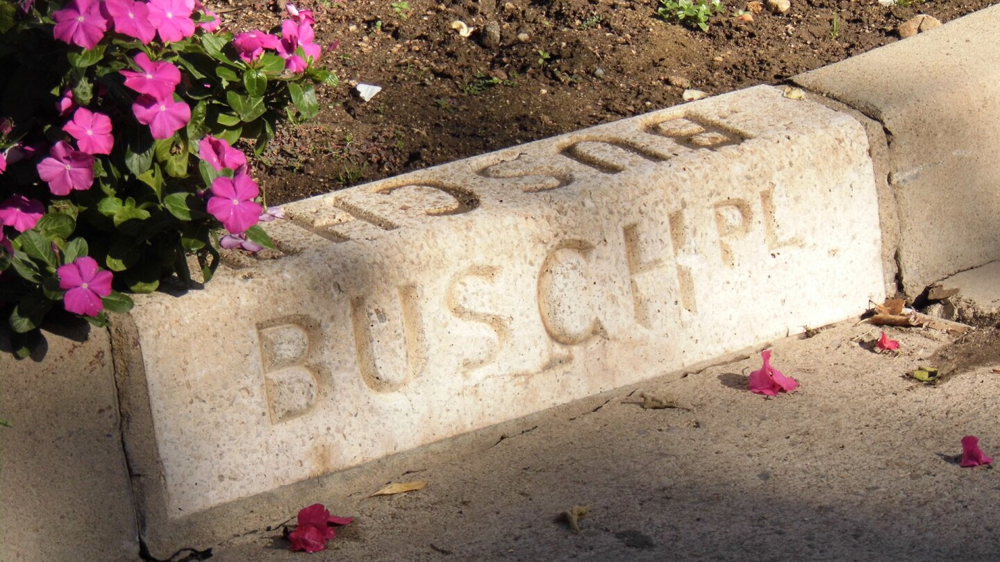 busch gardens on curb